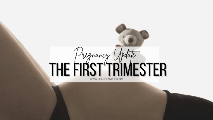 Pregnancy Update: The First Tri'MESS'ter.