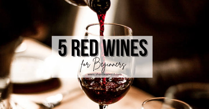5 Red Wines For Beginners
