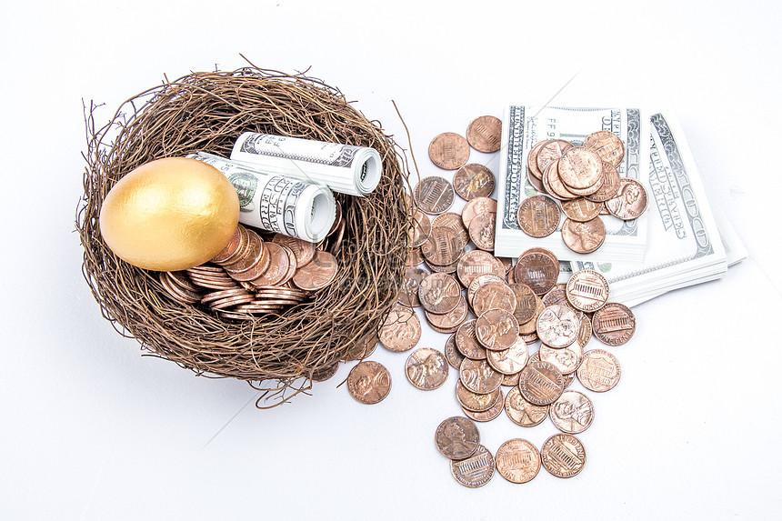 family financial goals nest egg