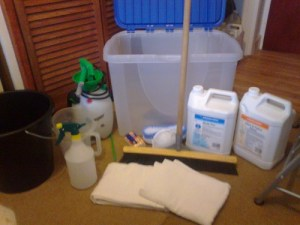 Complete DIY carpet cleaning package