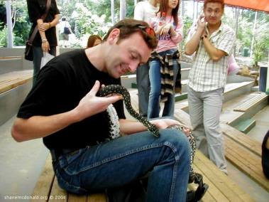 Diamond Backed Python, New South Wales, Australia This diamond backed Python decided it liked my leg and started to wrap himself around it.