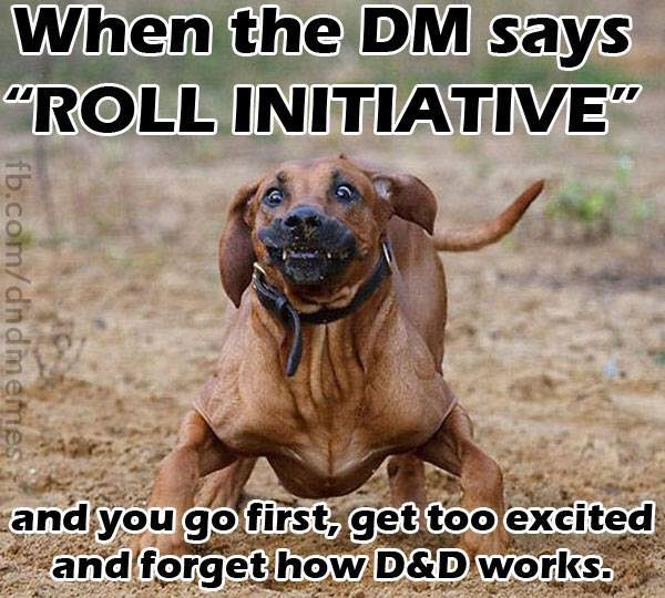 d&d roll initiative