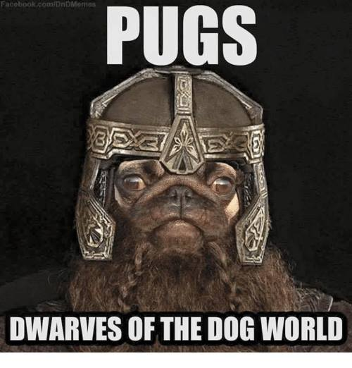 d&d meme pugs dwarves of the dog world