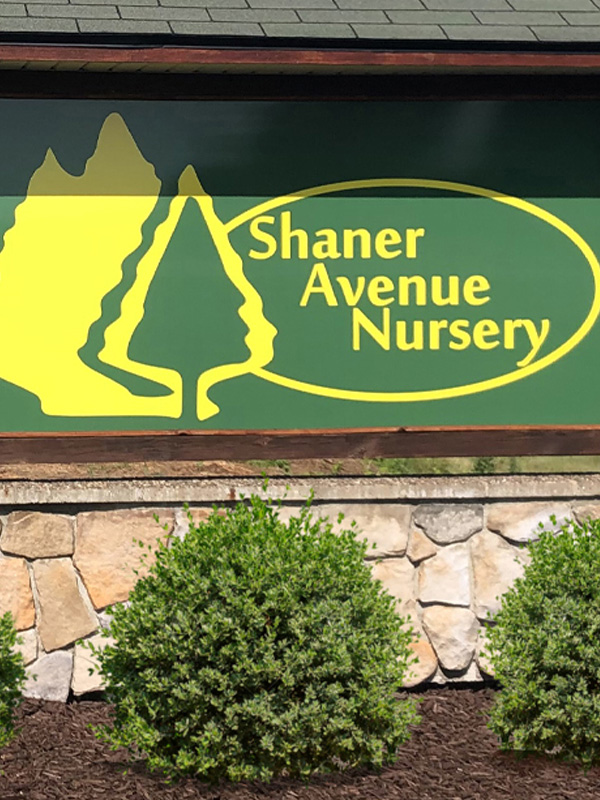 Shaner-No-Photo-Available