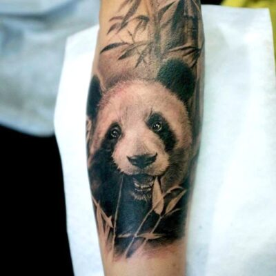 zhuo dan ting tattoo work panda tattoo的、卓丹婷纹身熊猫 1