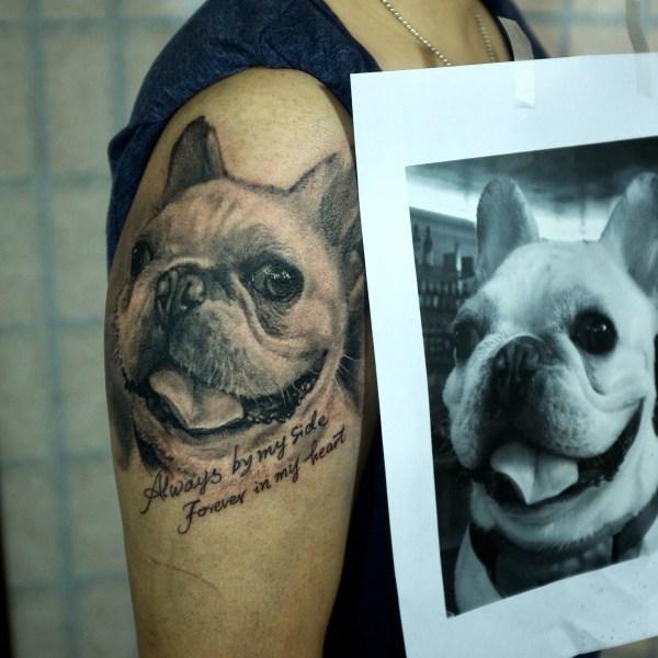 Zhuo-Dan-Ting-Tattoo-work-卓丹婷纹身作品-狗写实纹身
