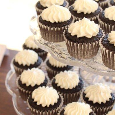 Mini chocolate cupcakes with cream cheese buttercream