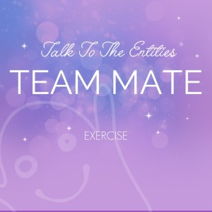 English: Team Mate Exercise