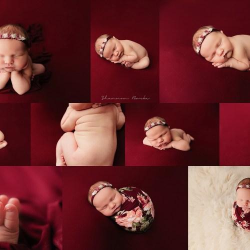 Peoria Newborn Photographer