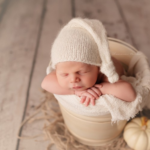 Anthem Newborn Photographer