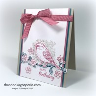 Stampin Up Best Birds Card Idea - Shannon Jaramillo Stampinup