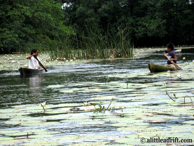 Kid Vendors Paddle Over