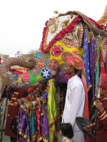holi elephants jaipur