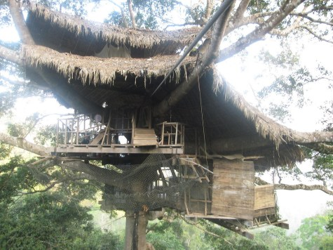 Review of the Gibbon Experience in Laos with treehouses and ziplines