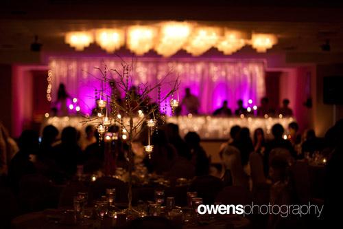 Reception and Event Decor Springfield MO