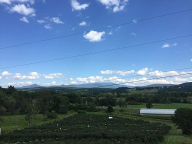 View from 4 Corners Farm