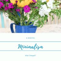 Journey to Minimalism - 8 Months