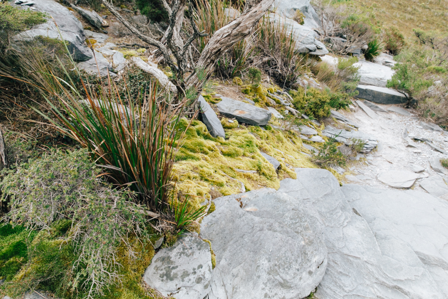 Climbing the Stirling Ranges to Bluff Knoll.
