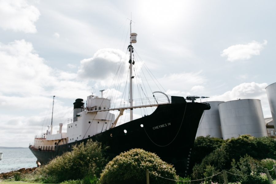 Cheynes IV whale ship in Albany.
