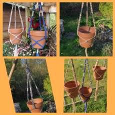 Suspension pour plantes