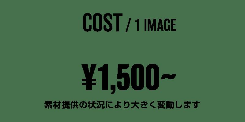 1画像あたりの料金 1500円〜