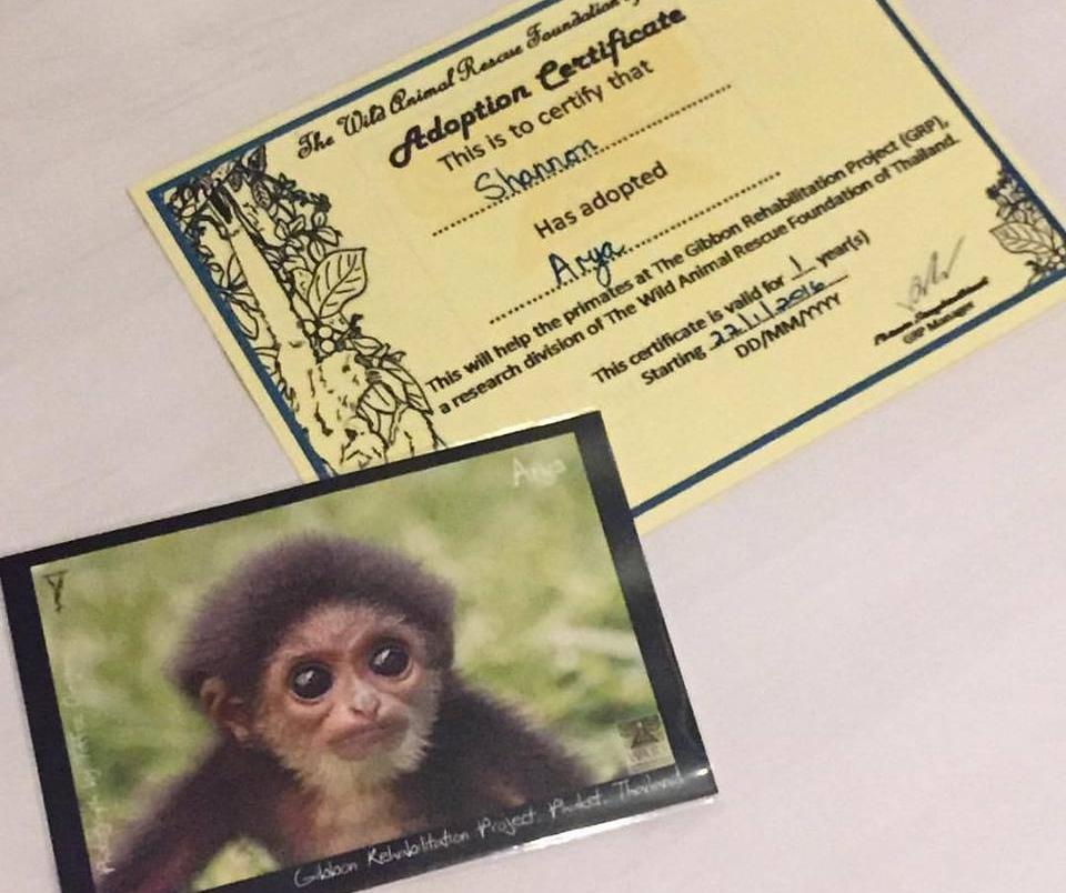 Gibbon Adoption Certificate