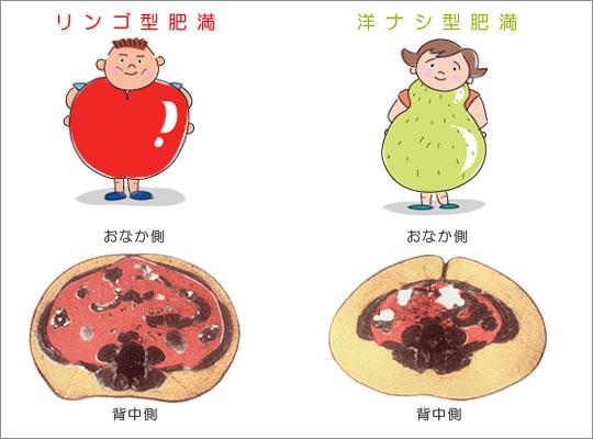 洋ナシ体型、リンゴ体型