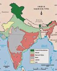 SOILS OF INDIA MAP
