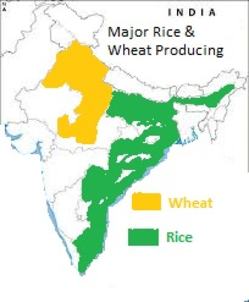 WHEAT AND RICE PRODUCING AREA IN INDIA - MAP REVISION