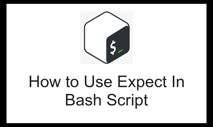 expect bash
