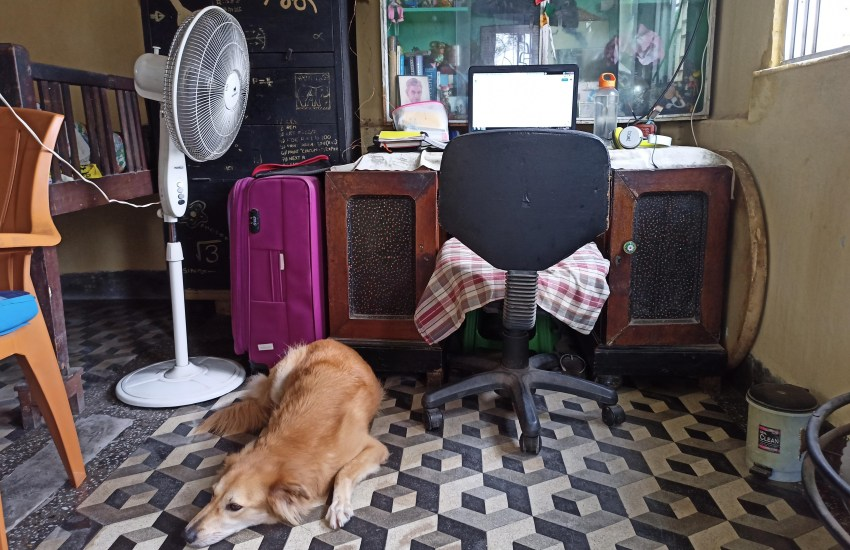 My workstation with my dog napping beside my chair