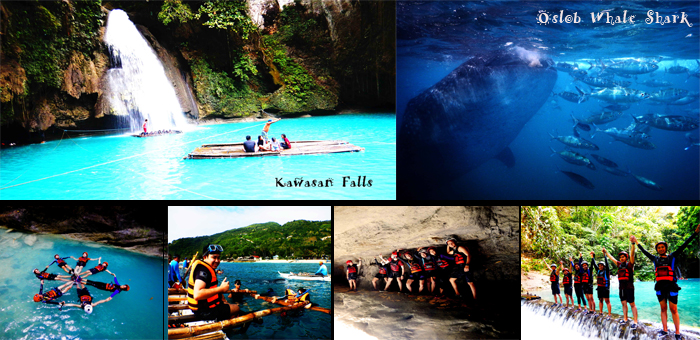 Once Upon a Time in Cebu | Oslob Whale Shark & Canyoneering to Kawasan Falls