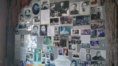 Hang Nga's Family tree