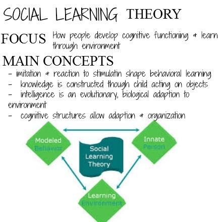 Cognitive Development in 11