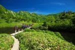 関西で春のハイキングを満喫!全然しんどくなく楽しめるスポットを紹介