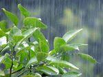 大阪の梅雨入り/明けは毎年いつ頃?2018年は?
