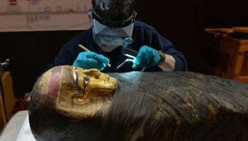 Conservador preparando una momia para la exposición (© AMNH/D. Finnin)