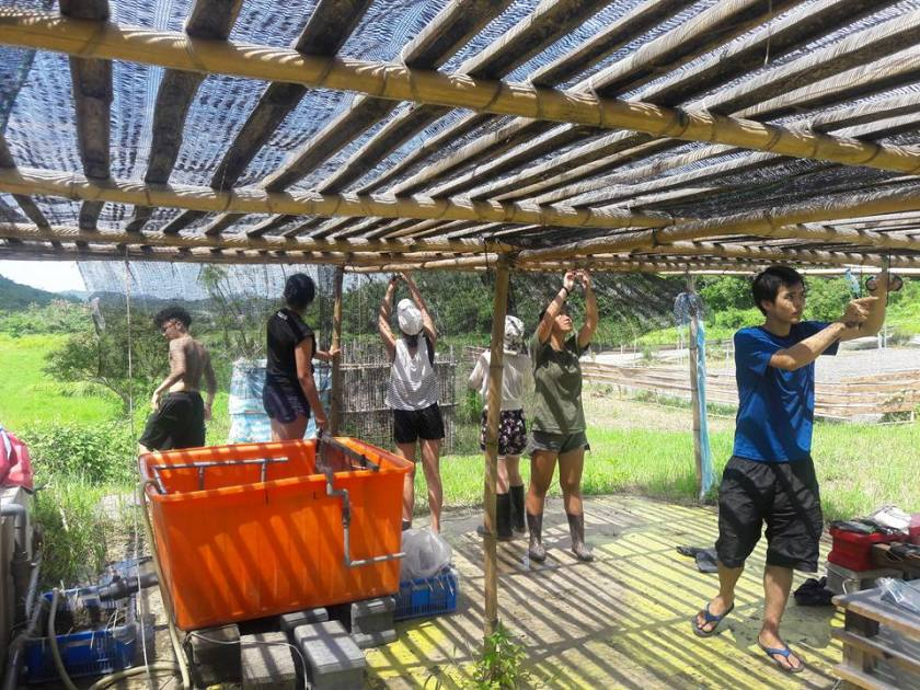 沁園雨來菇生態農場