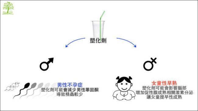 台灣不孕症比例約在 10 至 15%,其實是高於世界衛生組織公佈的數字