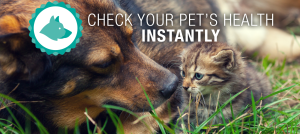 Check your pet's health instantly