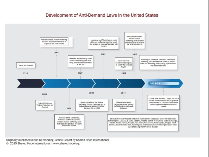 Development of Anti-Demand Laws in the United States