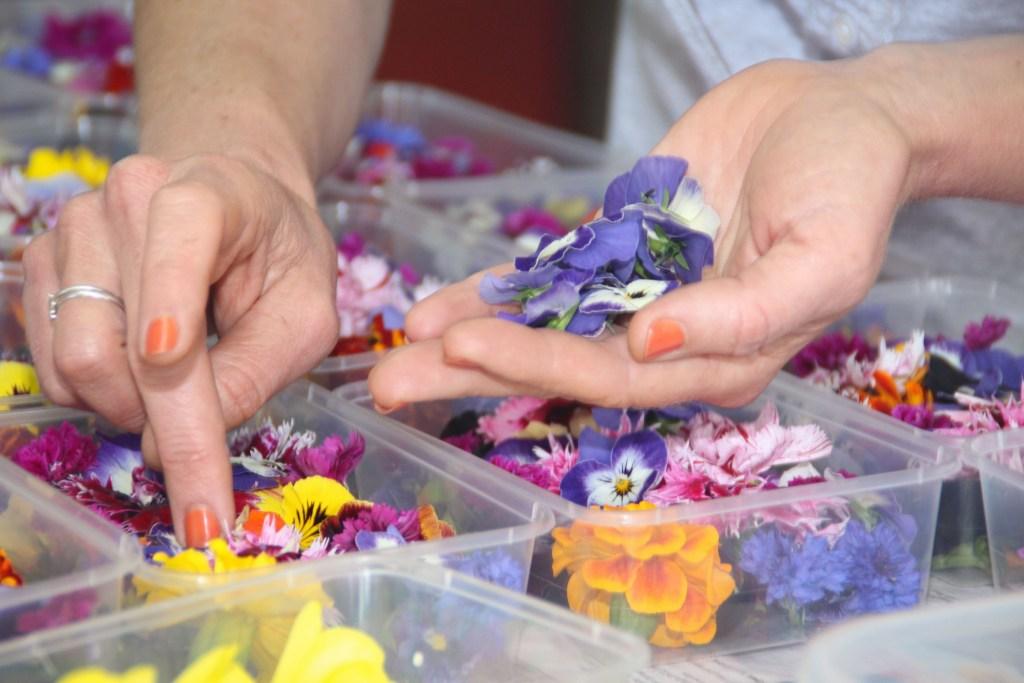 Tamsin sorting edible flowers