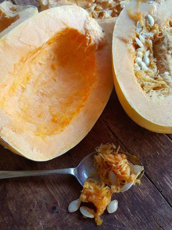 Scooped out squash