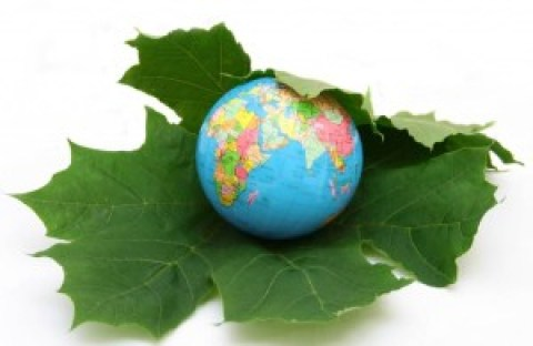 What should the world do to make sustainable development goals truly 'sustainable'?