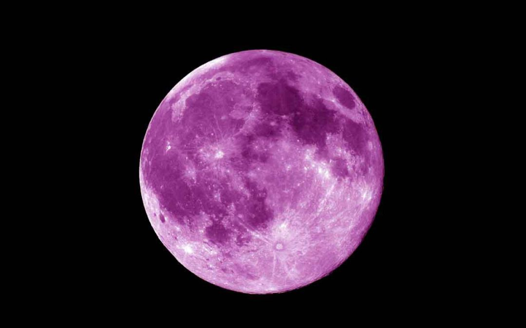 Short Story: Purple Moon by Diana W. [Readers Vote]
