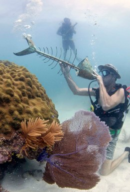 "Royce Kauffman blows through an artist's sculpted ""trombone fish"" at the Lower Keys Underwater Music Festival in the Florida Keys National Marine Sanctuary"