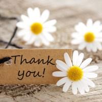 A Gratidão eleva nossa frequência vibracional