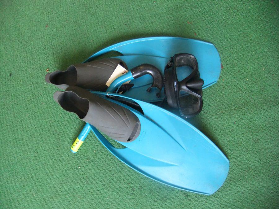 Flipper Set