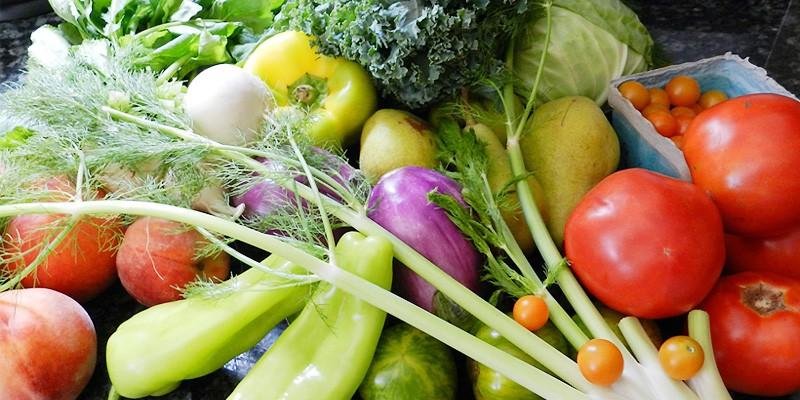 채소, 과일을 먹어야 하는 이유