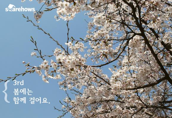 songs of spring 03